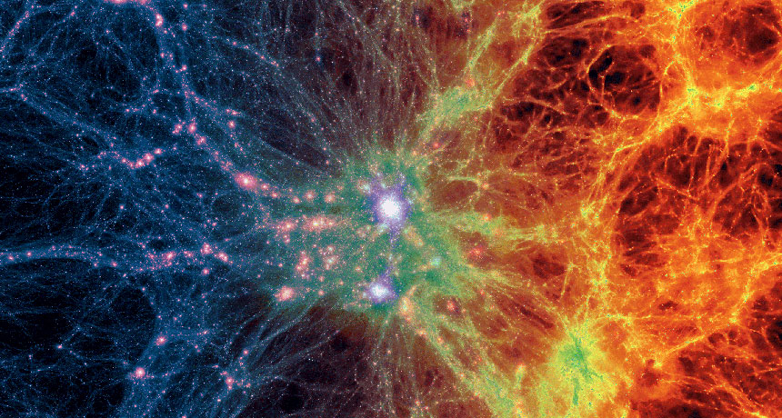 First Highlights of the Cosmic Web Revealed