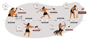 Humans Were Hypercarnivorous for Two Million Years