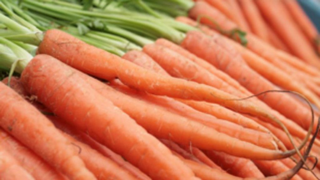 Carrot Health Enters an acquisition by Unite Us